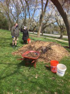 Volunteers mulch trees in Lovelace Park Evanston IL